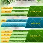 خصومات على دورات اكاديمية التدريب النوعي بمناسبة اليوم الوطني